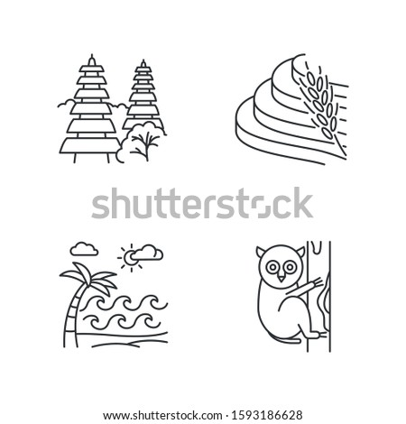 Indonesia linear icons set. Tropical country animals. Indonesian islands. Exploring exotic places. Thin line contour symbols. Isolated vector outline illustrations. Editable stroke. Perfect pixel ストックフォト ©