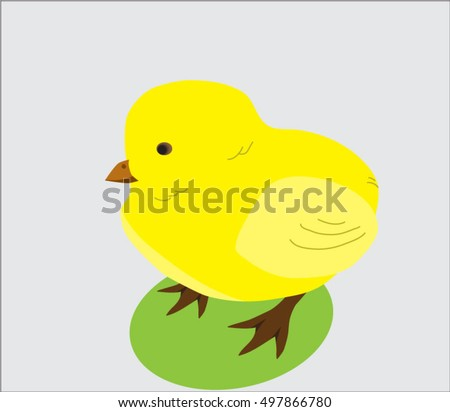 inexperienced chick walking on