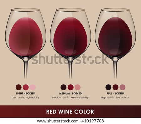 Info graphic vector of red wine types are classified by color.(EPS10)