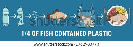 infographic of fish with