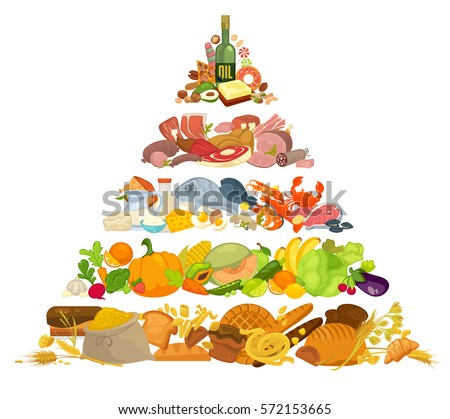 infographic of food pyramid