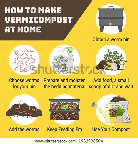 Infographic of vermicomposting. How to make vermicompost at home. Worm composting. Recycling organic waste, vermicomposter. Sustainable living, zero waste concept. Hand drawn vector illustration.  Foto stock ©