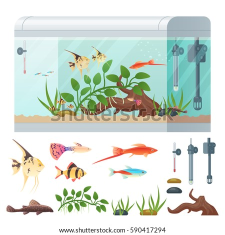 infographics aquarium set