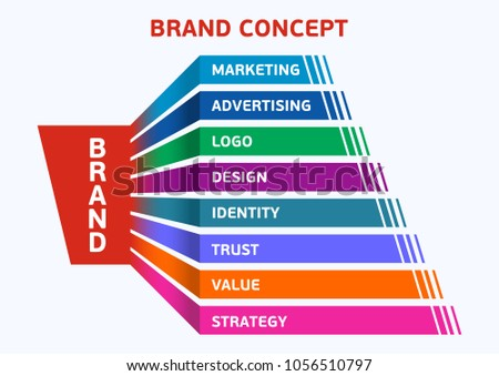 Infographics. Steps of creation of a brand. Brand components. Vector color illustration.