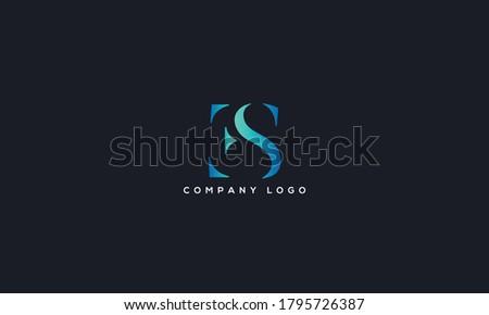 Initial Letter ES or SE Logo Design vector Template. Creative Abstract ES Logo Design Vector Illustration Stock fotó ©