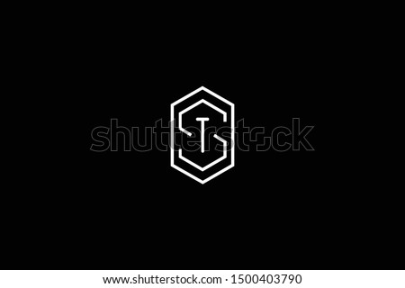 Initial ST TS Letter Logo Design Vector Template. Monogram and Creative Alphabet S T Letters icon Illustration. Stok fotoğraf ©