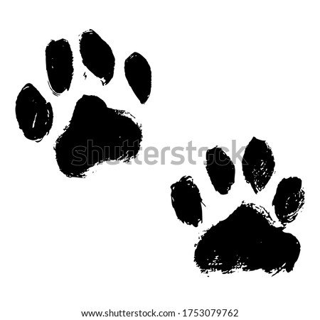 Ink Dog's Paw illustration, Cat`s Paw. Print Vector Photo stock ©