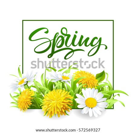 Inscription Spring Time on background with spring flowers