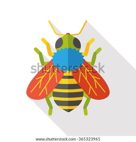insect bug flat icon