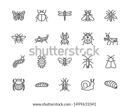 Insect flat line icons set. Butterfly, bug, dung beetle, grasshopper, cockroach, scarab, bee, caterpillar vector illustrations. Outline signs for insects pest. Pixel perfect. Editable Strokes.