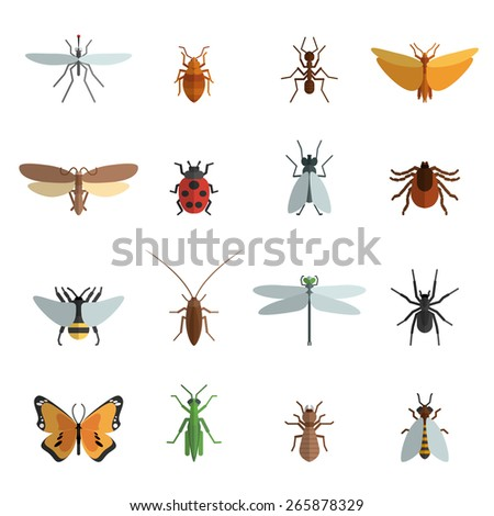 insect icon flat set with