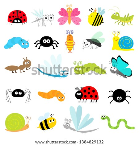 insect icon set lady bug