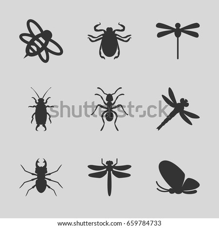 insect icons set set of 9