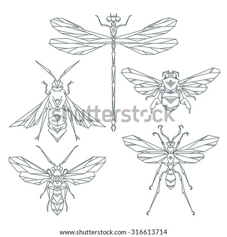 insect icons  vector set