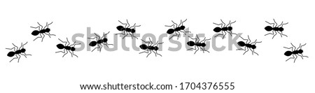 Insect Insects ant ants emmet pismire banner. Vector icon icons sign signs fun funny Photo stock ©
