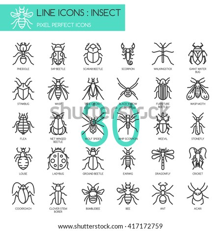 insect   thin line and pixel