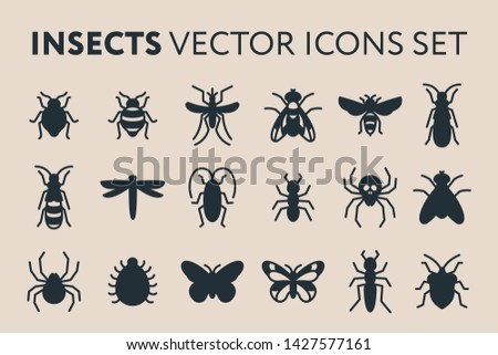Insect Vector Flat Solid Glyph Icon Illustration Set. Bed Bug, Fly, Dragonfly, Ant, Roach, Cockroach, Mosquito, Termite, Spider, Butterfly, Bee, Wasp.