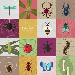 Insect world.  It is a collection of fifteen insects. Including snail, dragonfly, grasshopper, spider, scorpion, silkworm, flies etc.