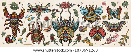Insects old school tattoo vector collection. Stag beetle, bee, bumblebee, butterfly, snail, scorpion, ladybug, spider, dragonfly. Traditional tattooing style