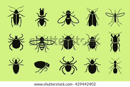 Insects vector icon set. Pest control. Cockroach, termite, fly, bee, mosquito, spider, flea, ant, mite, bug, beetle Stock photo ©