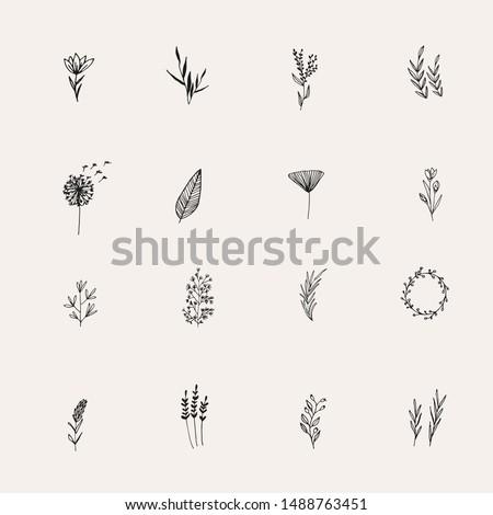 Instagram Cover Highlight Icon. Black Flower logo element. Hand drawn plants. Natural Instagram Story. Simple doodle. Instagram Story Highlight Icon.