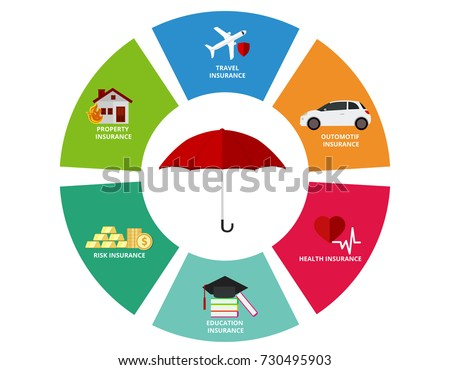 Insurance type and variety infographic chart icon vector illustration