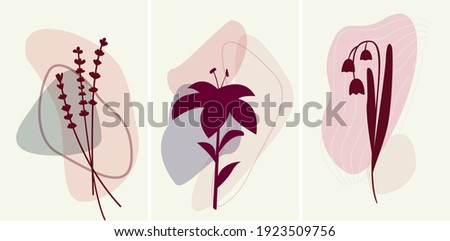 Interior abstract minimalism set of posters with plants. Vector  lavender, lily, lily of the valley. Vinous and pink colour botanical posters Foto d'archivio ©