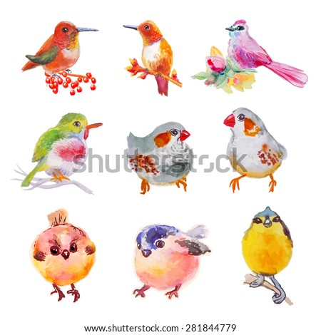 isolated birds set