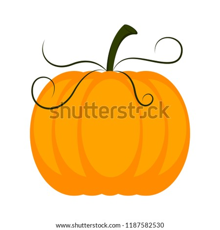 Isolated colored pumpkin icon