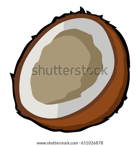 Isolated cut coconut on a white background, Vector illustration