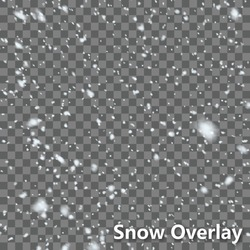 Isolated Falling Snow Overlay | EPS10 Vector
