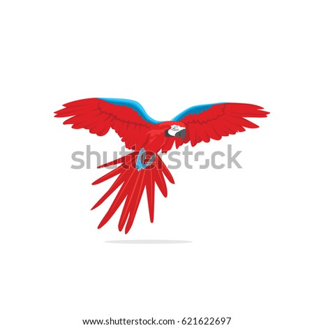 Shutterstock Isolated flying macaw bird
