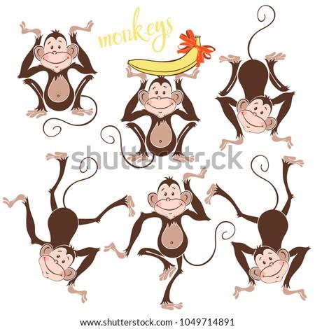 isolated funny monkeysvector