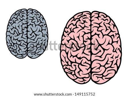 Isolated human brain in red and gray colors for medicine design or idea of logo. Jpeg version also available in gallery