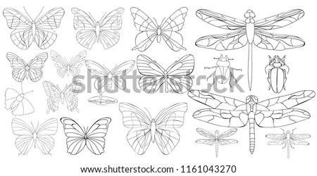 isolated, insect set of butterflies and dragonflies, coloring book