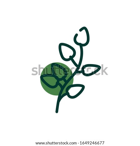isolated natural leaves half