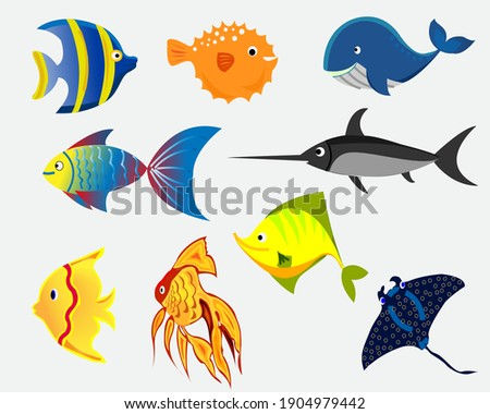 Isolated ocean fish.set of underwater cartoon fishes.Varieties of ornamental popular color fish.flat design fish.Vector illustration, fishes.fish collection ocean modern flat fishes