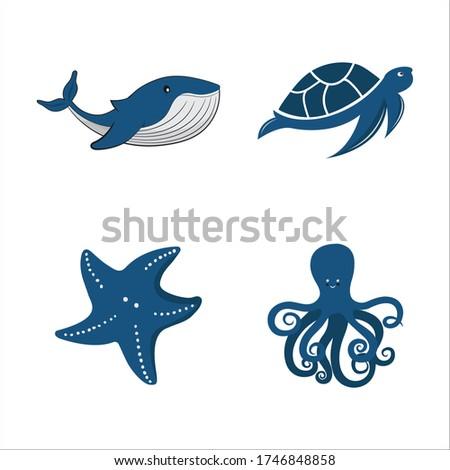 Isolated river fish. Set of freshwater aquarium cartoon fishes. varieties of ornamental popular color fish. Flat design fish. Vector illustration, fishes. fish collection. aquarium modern flat fishes.