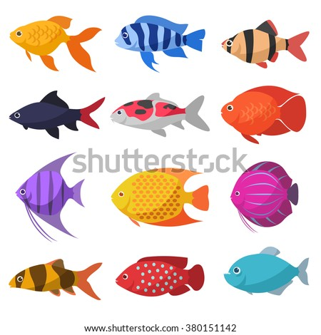 isolated river fish set of