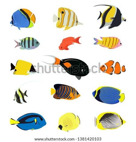 Isolated sea fish. Set of aquarium cartoon fishes. varieties of ornamental popular color fish. Flat design fish. Vector illustration, fishes. Fish collection. Aquarium modern flat fishes.