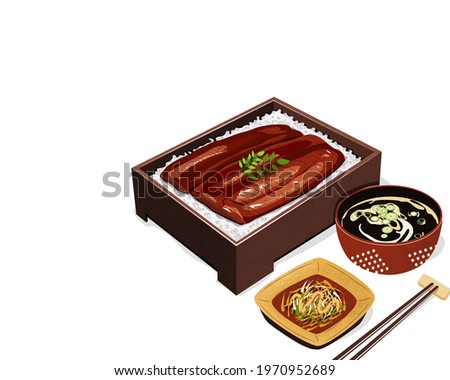 Isolated set of Unagi Kabayaki Japanese Eel Grilled with sweet sauce in bento box with side dish and soup. Isolated Unagi bento on white background. Asian Food drawing vector illustration