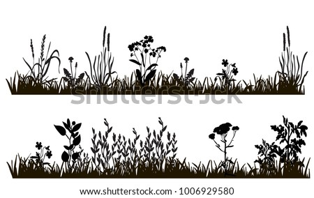 isolated silhouette of grass and plants, meadow on white background