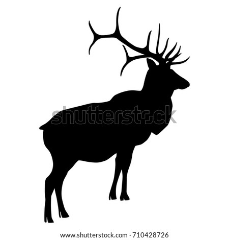 Deer - Black and White clipart. Free download transparent .PNG | Creazilla