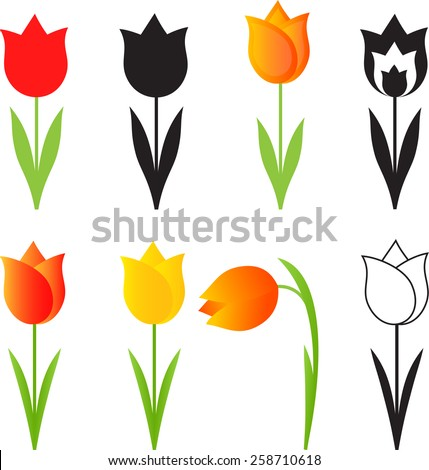 isolated spring flowers vectors