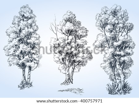 isolated trees set  hand drawn