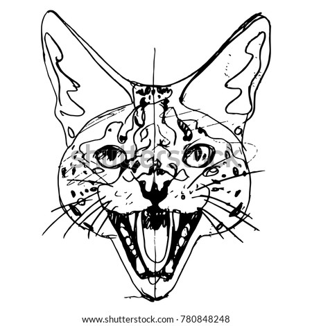 Isolated vector illustration. Linear sketch of a serval head. Based on hand drawn black ink sketch.