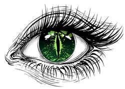 Isolated vector illustration of realistic human eye with reptile snake iris.
