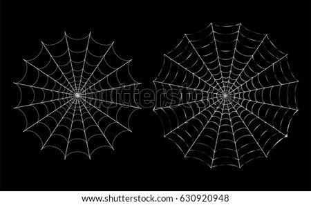 Isolated White thin Spider web on black, vector