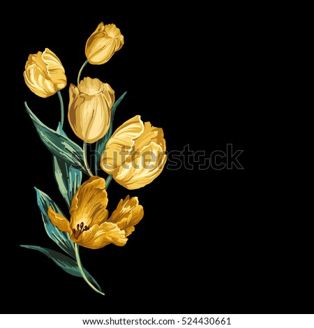 isolated yellow tulips on a