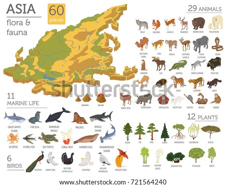 Isometric 3d Asian flora and fauna map constructor elements. Animals, birds and sea life isolated on white big set. Build your own geography infographics collection. Vector illustration